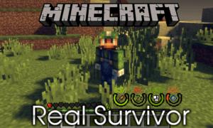 Мод на реалистичное выживание для minecraft 1.12.2