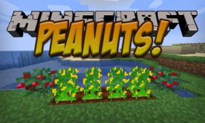 Мод на арахис - Peanuts для minecraft 1.14.4