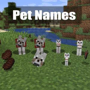 Мод на имена у мобов Pet Names для minecraft 1.14.4, 1.12.2
