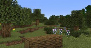 Мод Traverse (новые биомы) для майнкрафт 1.16.1, 1.15.2, 1.14.4, 1.12.2