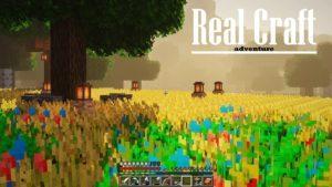 Ресурспак Real Craft [16x] 1.15.2, 1.14.4, 1.12.2