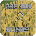 Мод Are You Blind (подсветка предметов) 1.15.2, 1.14.4