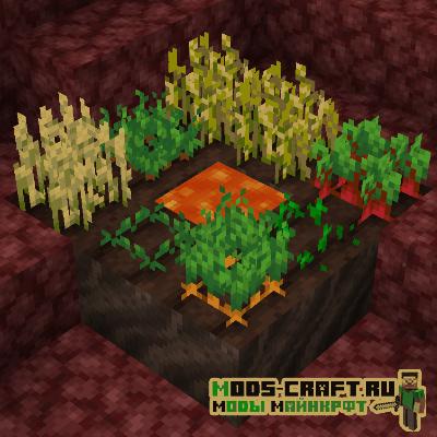 Мод Soul Soil Farmland для майнкрафт 1.16.1