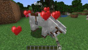 Мод на воскрешение питомца - Save Your Pets для майнкрафт 1.16.3, 1.15.2