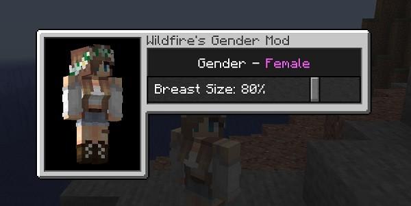 Мод Wildfire's Gender 1.16.4 (смена пола в Майнкрафт)
