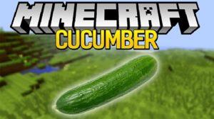 Cucumber для майнкрафт 1.16.5, 1.15.2, 1.14.4, 1.12.2