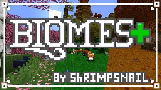 Ресурс-пак Biomes+ [16x] 1.16.5