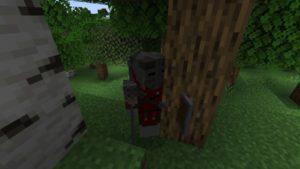 Мод SkyrimCraft для Майнкрафт 1.16.5, 1.14.4, 1.12.2