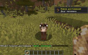 Мод Caracal для Майнкрафт 1.16.5