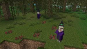 Мод NoCube's Wilderness 1.16.5