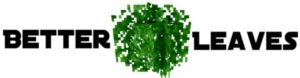 Текстур-пак на красивую листву 1.17.1, 1.16.5, 1.14.4